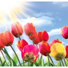 С пасхальными и майскими праздниками!